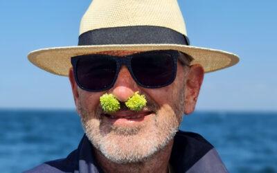 Round 32 Reveals – Broccoli