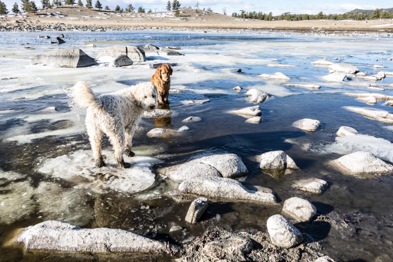 Ice by Kathy Milks