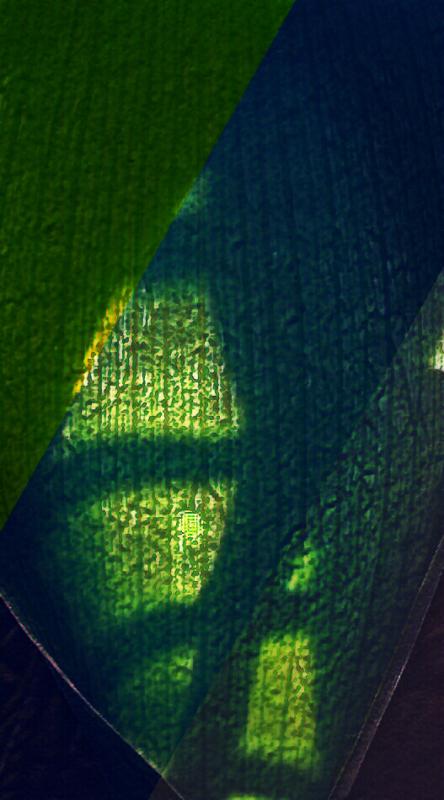 Leaf by Hope OHara_1552704427291