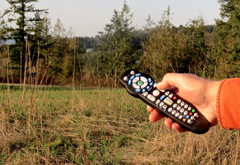 Remote by Elaine Mattson