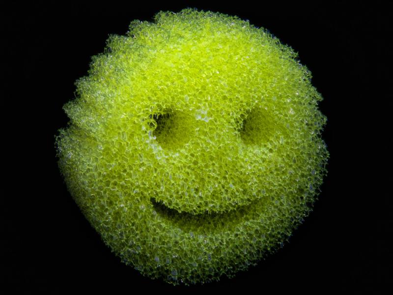 Sponge by Brent Martin
