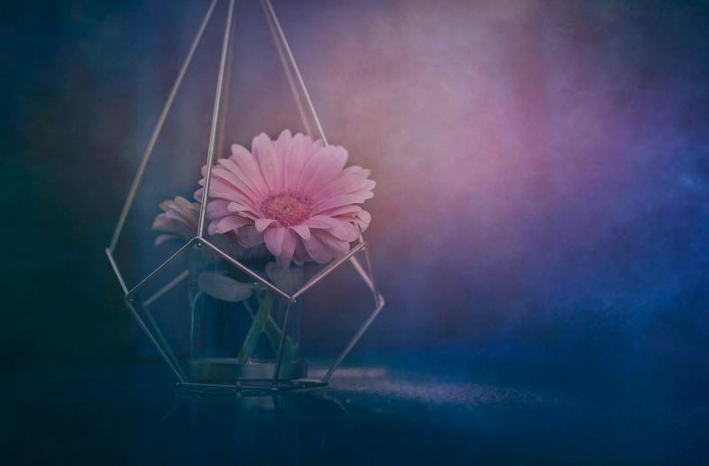 vase by kimberton
