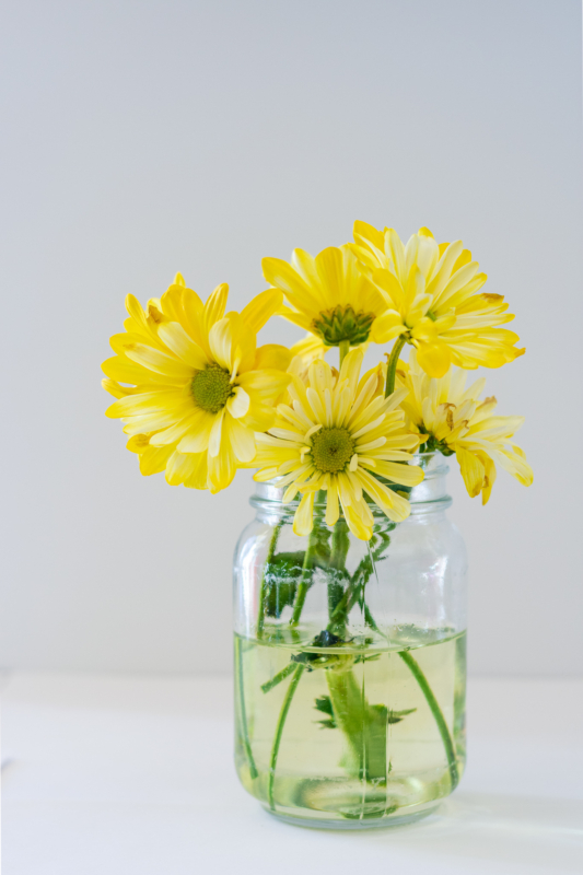 Vase by Sasha Oylear