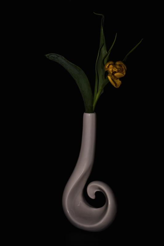 Vase by Steffan Correll
