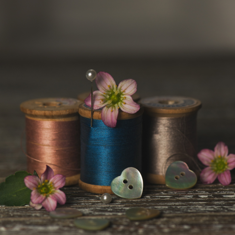 button by rose badlaniHM by Sandra ParlowHM by Rita Zietsma