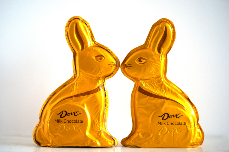 chocolate by kathleen kent