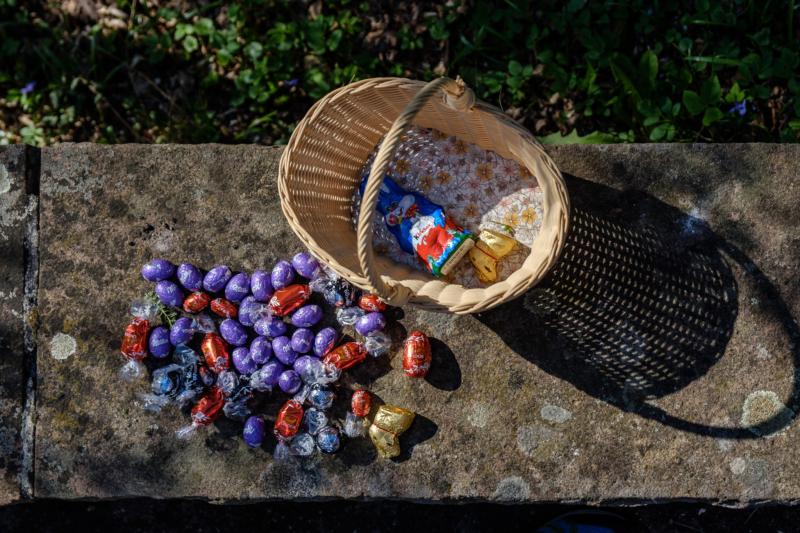 chocolate by maayan windmuller