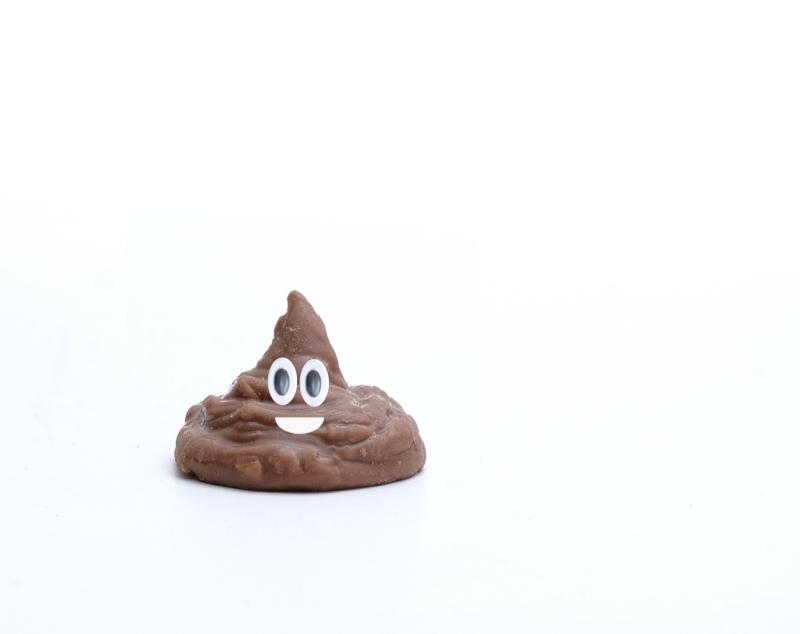 chocolate by patt dickson