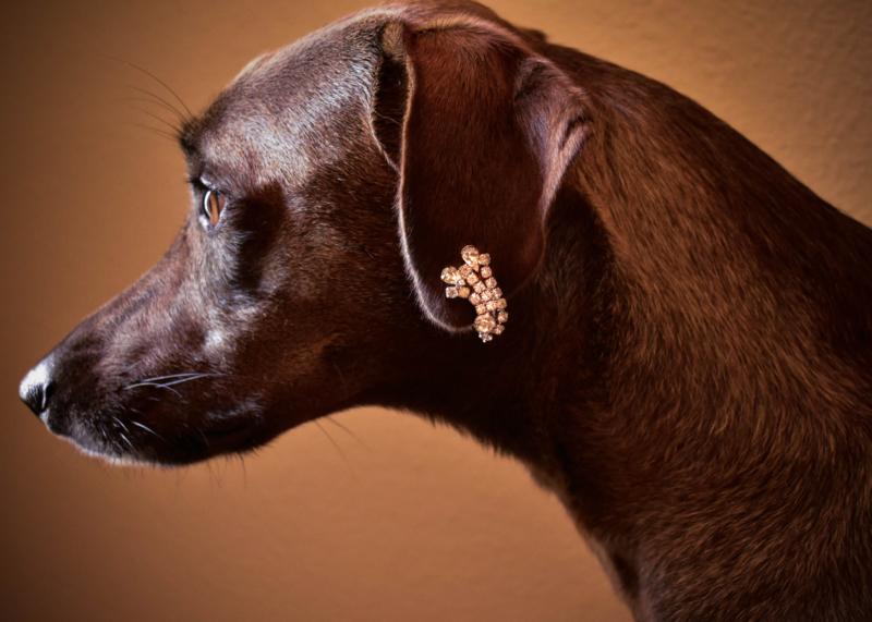 earring by Linda Basilick
