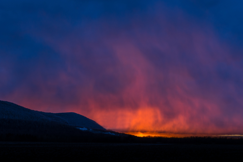 fire by giselle savoie