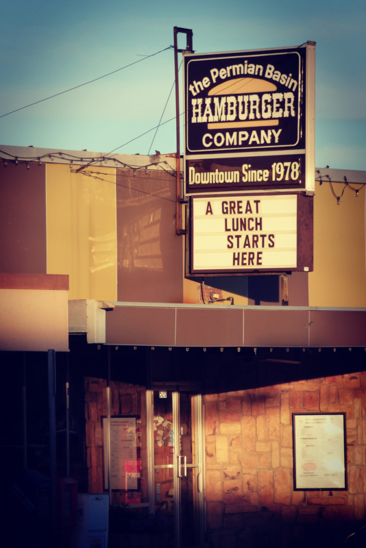 hamburger by james a woods