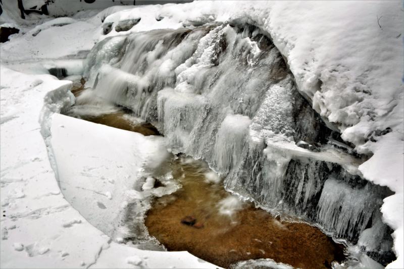 ice by Cindy Telley.jpg