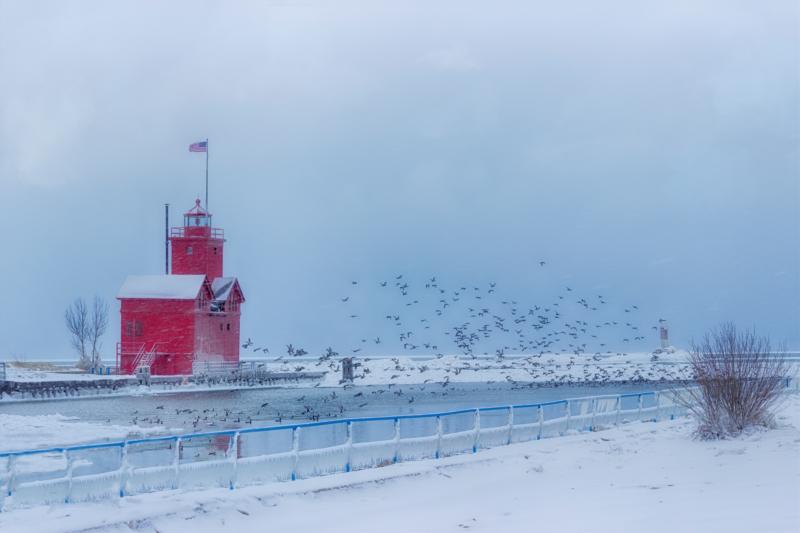 ice by frances schermers vugteveen