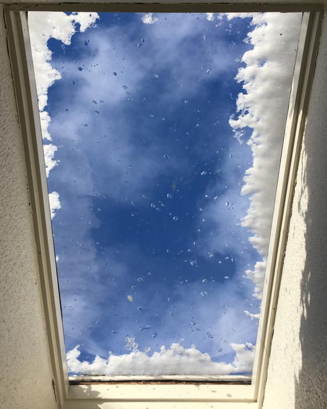 ice by shari seibold
