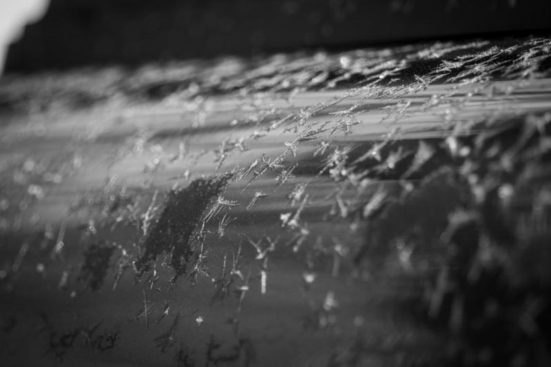 ice by susan tournour