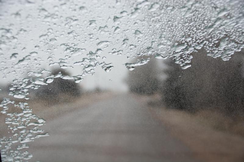 ice by Eva Ryan