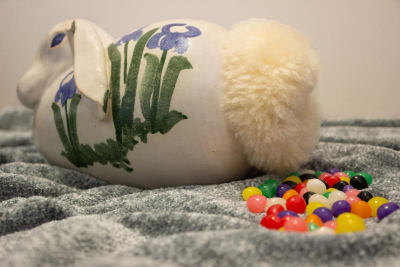 jellybean by elizabeth lund