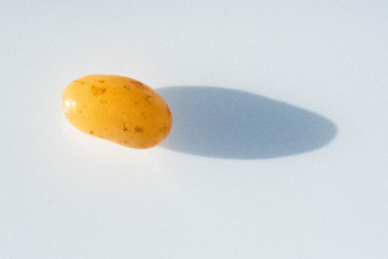 jellybean by kathleen kent