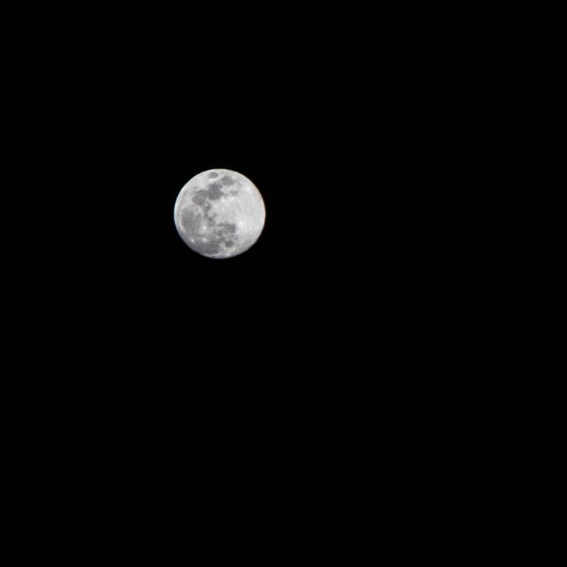 moon by Dawn Ellen Miller