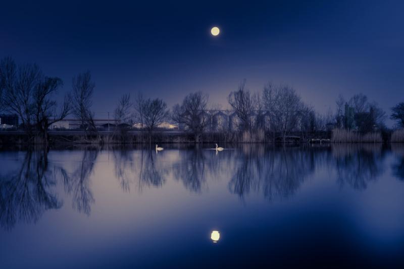 moon by Michal Vörös