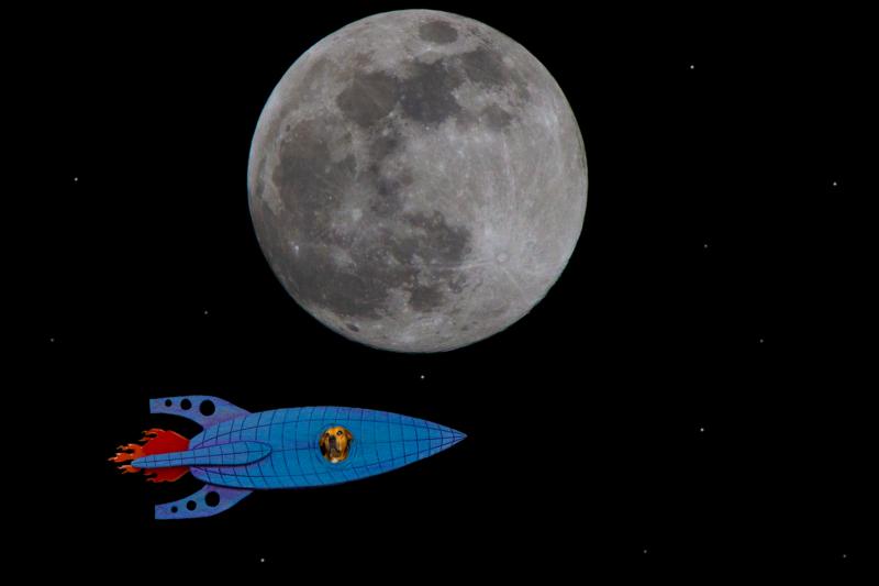 moon by alex bellanger