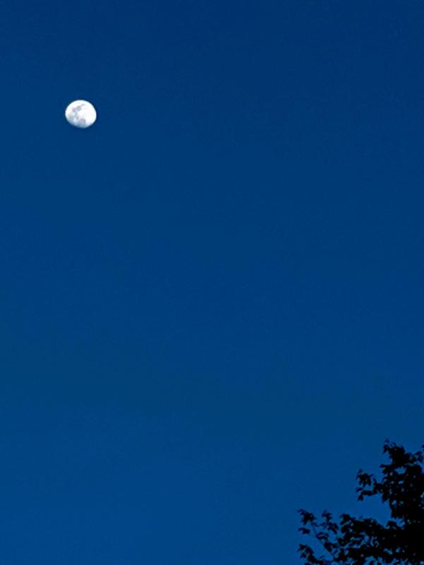 moon by ariel kristen kasten