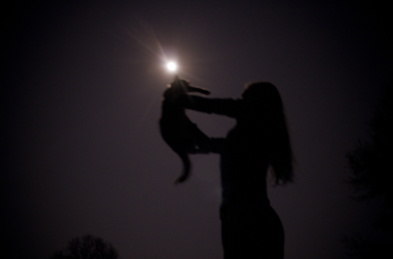moon by bretta elmore