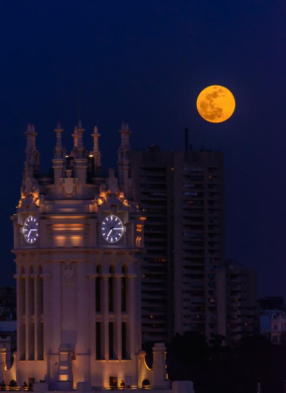 moon by carmen mandich.jpg