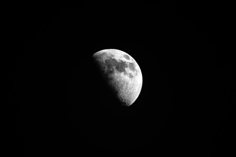 moon by cathy lovell.jpg