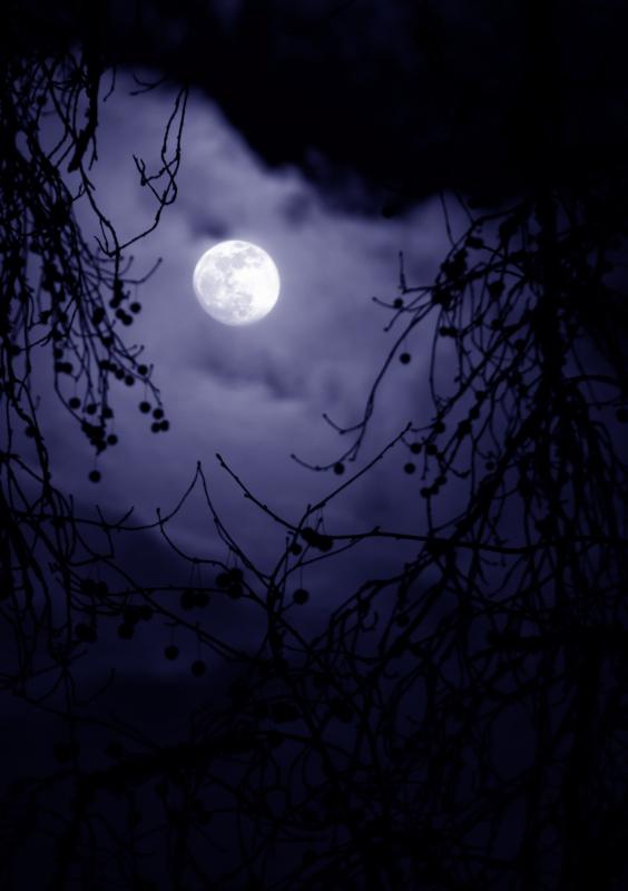 moon by chris goldthorpe