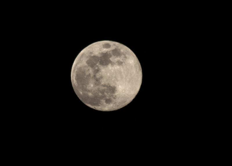 moon by daniel dillman