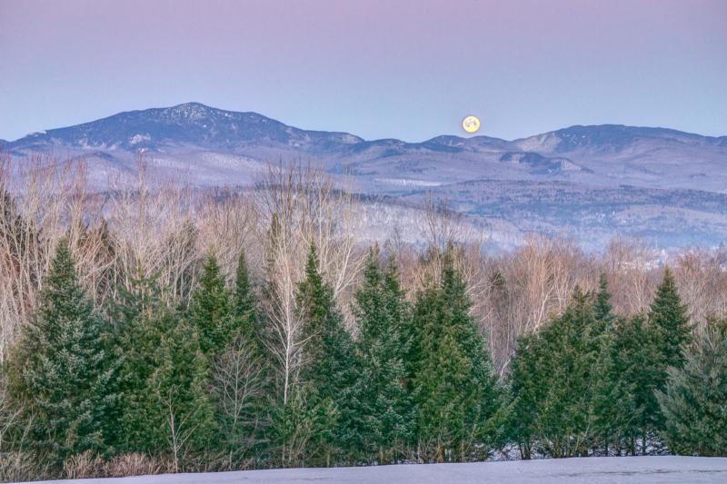 moon by david r robinson