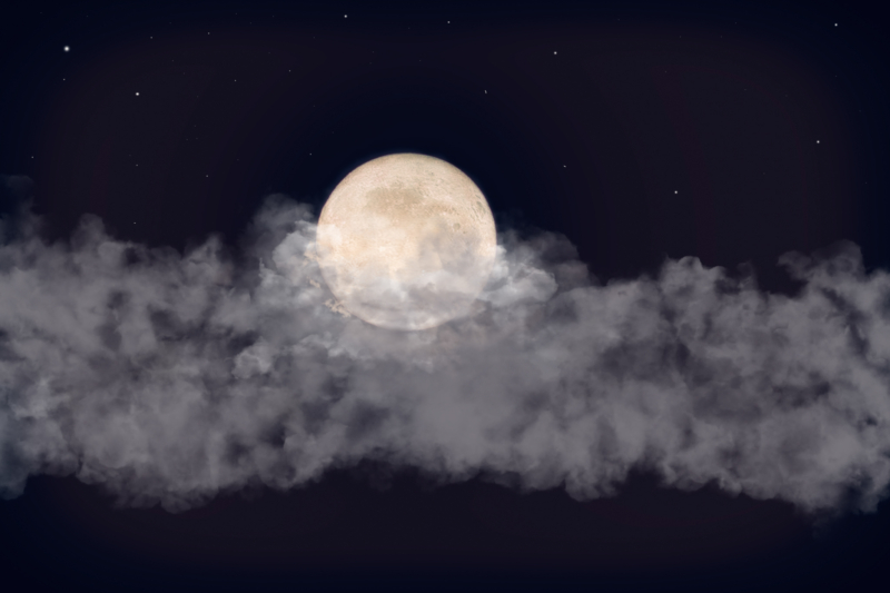 moon by frances schermers vugteveen