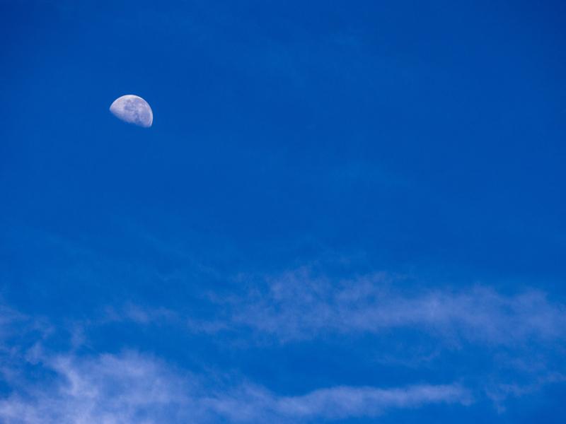 moon by greg kerr