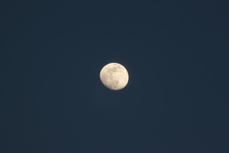 moon by justin hawkins