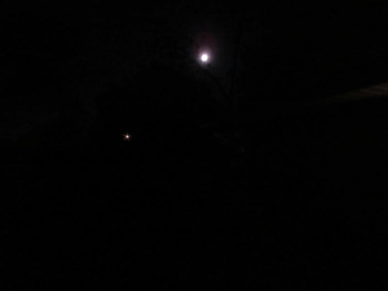 moon by kathie pendle .jpg