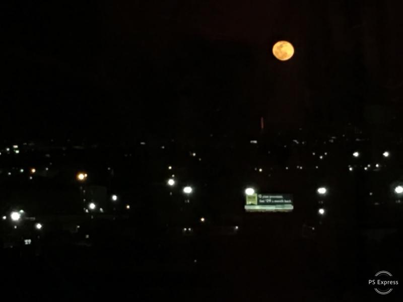 moon by lori alexander.jpg