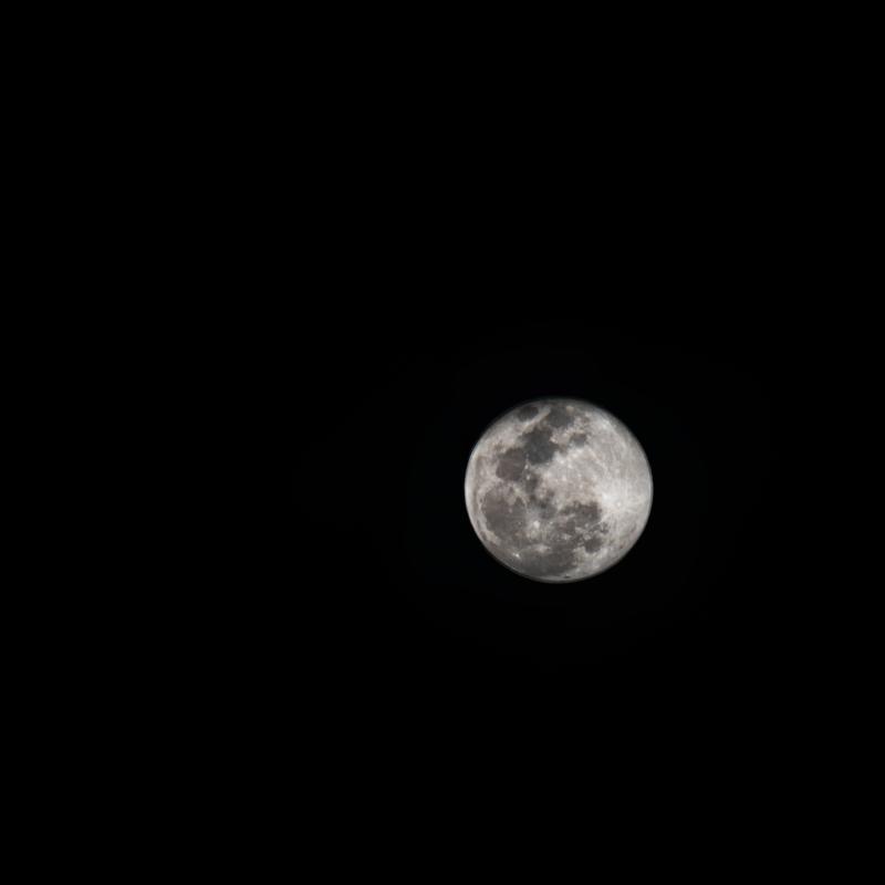 moon by paula contreras