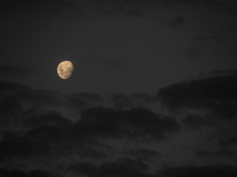 moon by penny kerr