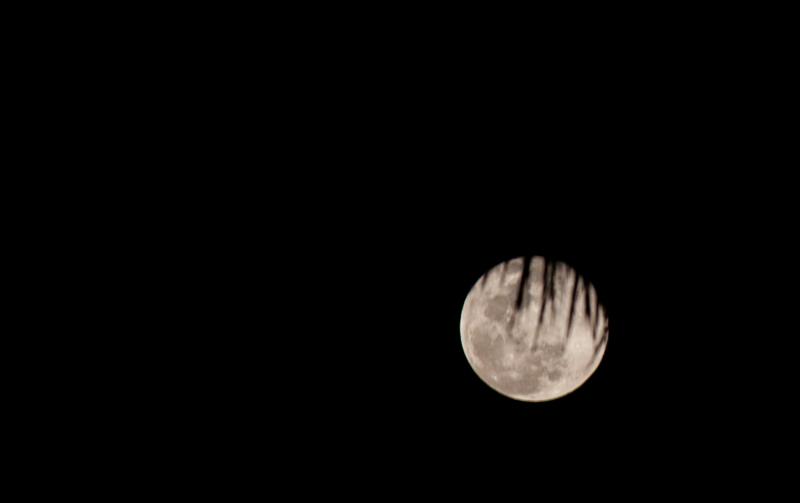 moon by ralph mendoza