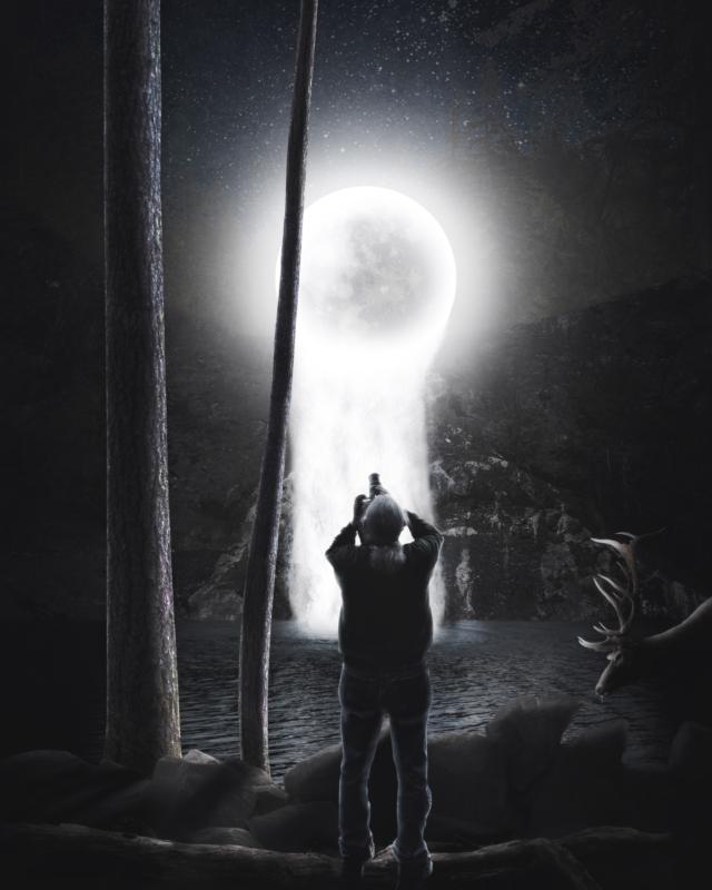 moon by shari seibold