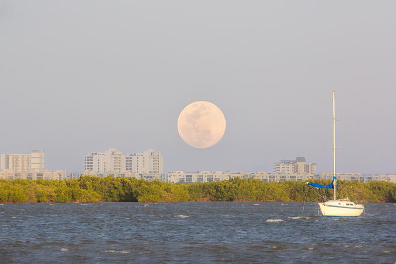 moon by steve defeo
