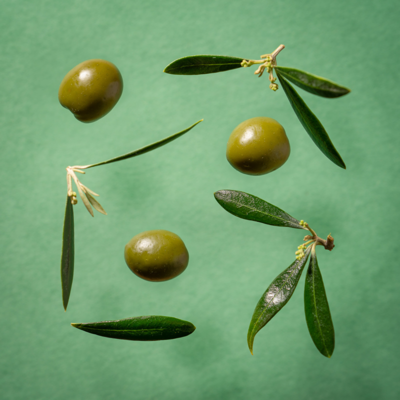 Olive by eric raeber