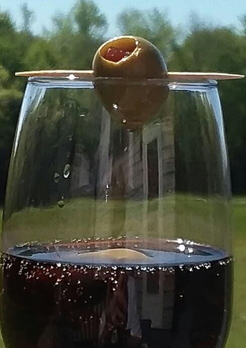 olive by susan oren