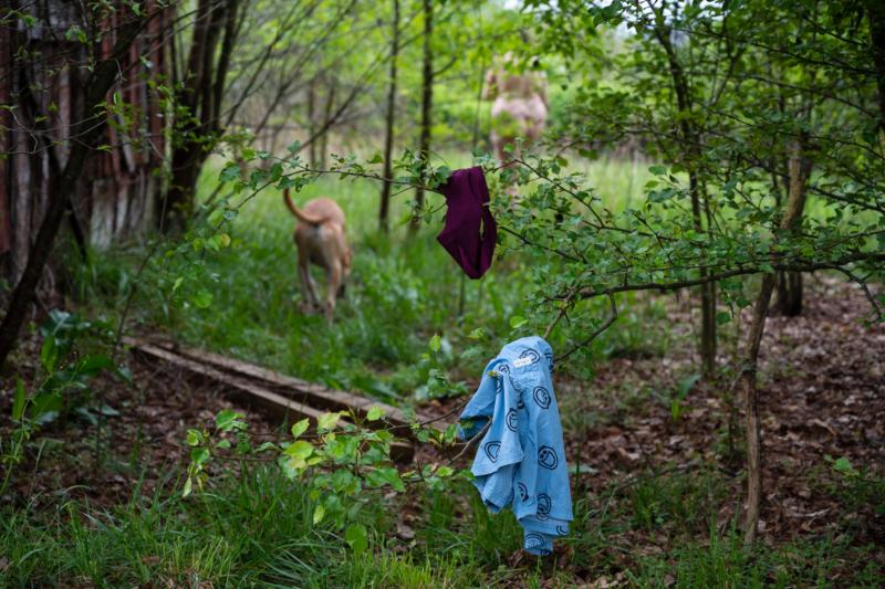 underwear by ginnie lerch