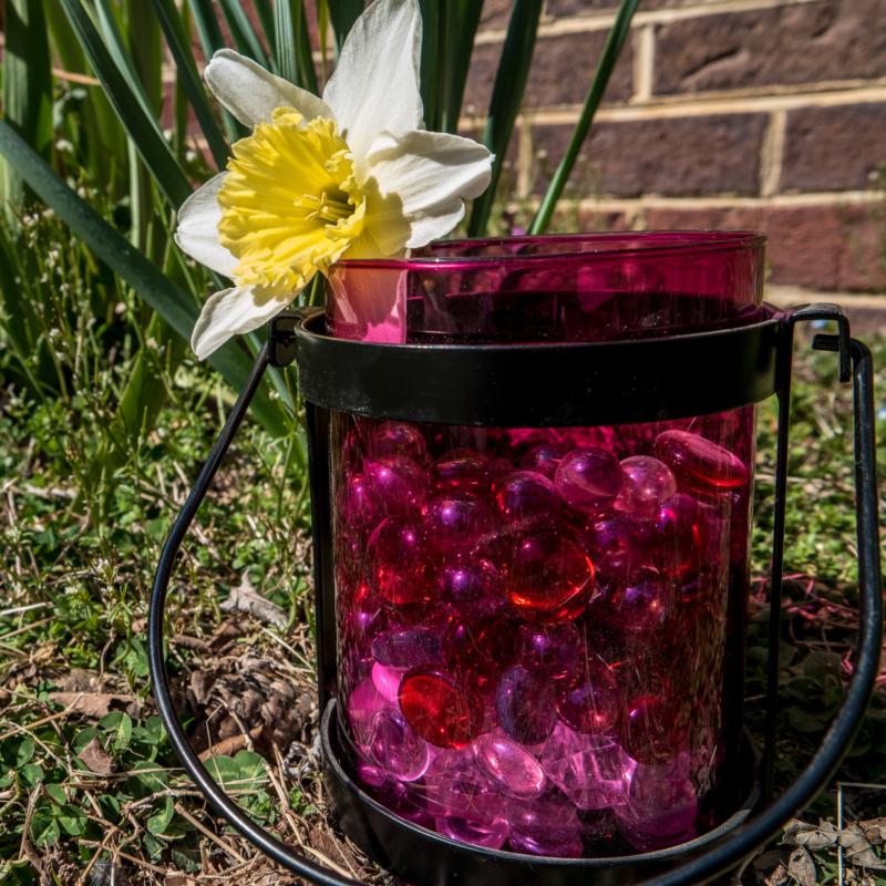 vase by Dawn Ellen Miller