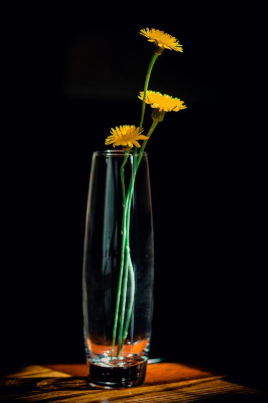 vase by amy g