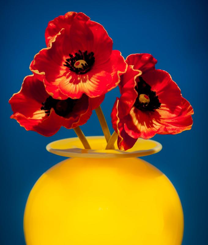 vase by cb friedland