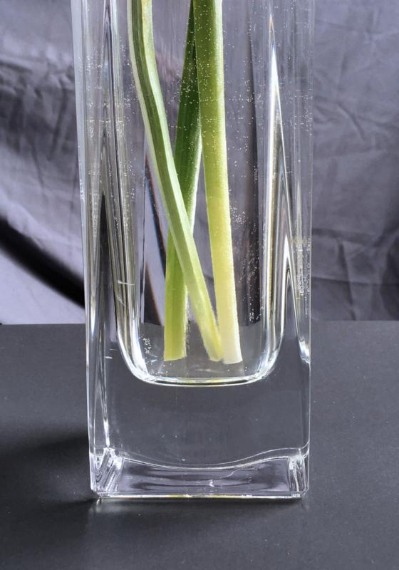 vase by cooper burgess