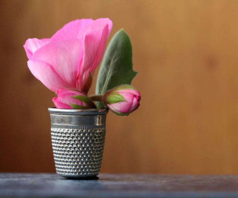 vase by dianne poulin